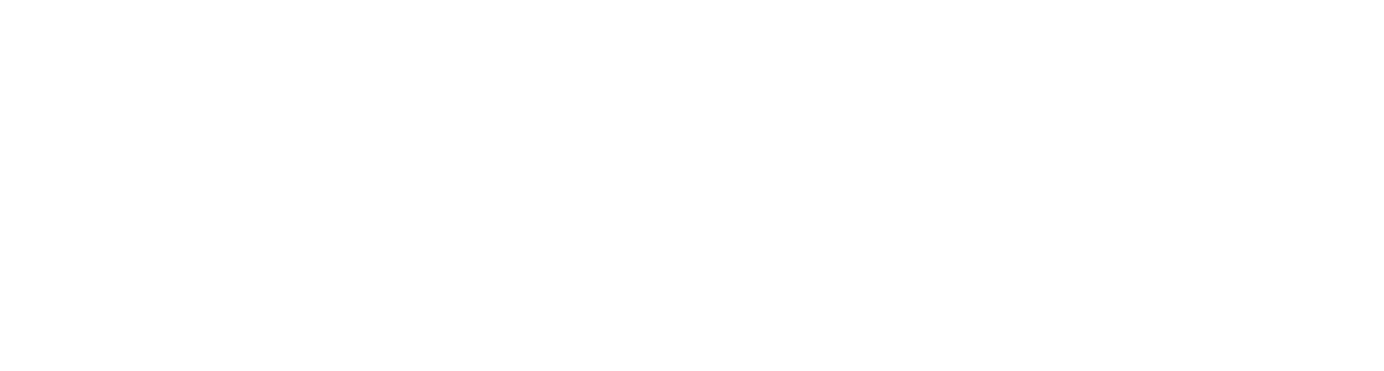 ANGIZ Logo